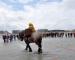 Bezoek vorsten aan paardevissers